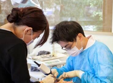 拔牙治療半途而廢 小心牙齦變黑影響求職自信